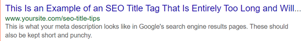 seo title tips example of an seo title tag that's too long